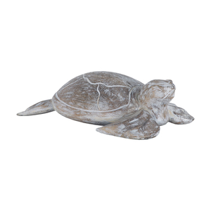Galapagos Turtle White Washed Albasia Wood
