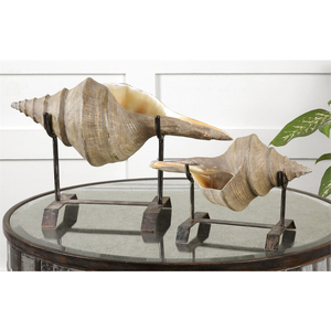Conch Shell, Sculpture S/2