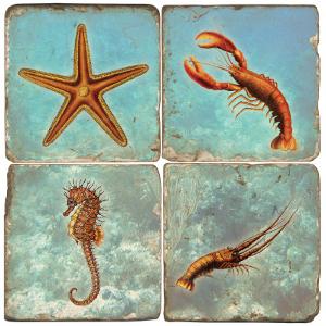 Sea Life Marble Coasters
