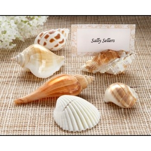 Real Shell Place Card Holders