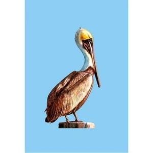 Pelican Designer Flag