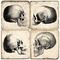 Skull Marble Coasters