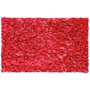 Shaggy Raggy Red Shag Rug, 4.7 X 7.7