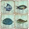 Fish Marble Coasters