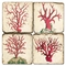 Red Coral Coasters