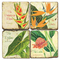 Tropical Bars Coasters S/4