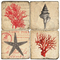 Shell, Starfish and Corals Italian Marble Coasters