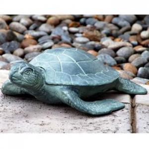 Sea Turtle Set Of 2