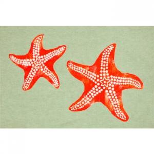 Starfish Seafoam Indoor Outdoor Rug