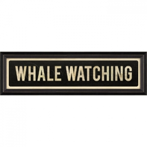 Whale Watching Framed Art Sign