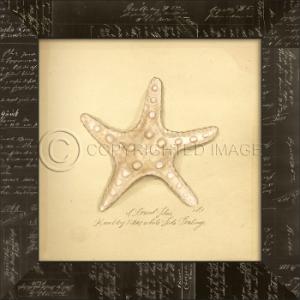 Knolby Star Fish  Framed Art