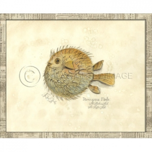 Porcupine Fish Framed Art