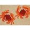 "Liora Manne Frontporch Crabs Indoor/Outdoor Rug - Natural, 30"" By 48"""