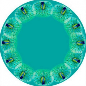 Peacock Round Table Cloth