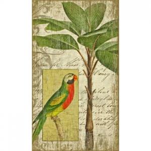 Parrot I Wall Art