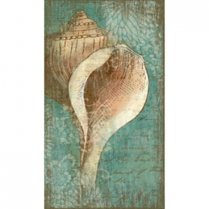 Bermuda Shell I Wall Art