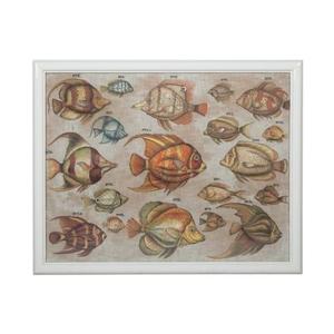 Tropical Fish Study Wall Decor, Original Art