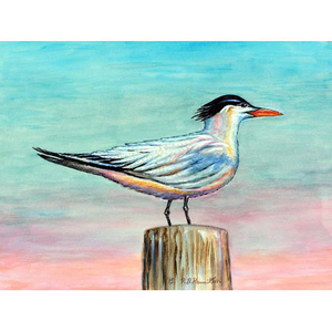 Royal Tern Door Mat