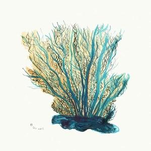 Blue Coral Coaster Set Of  4