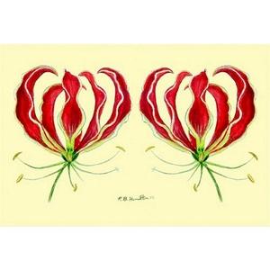 Red Lily Door Mat 30X50