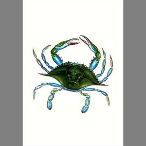 Female Blue Crab Flag 28X40