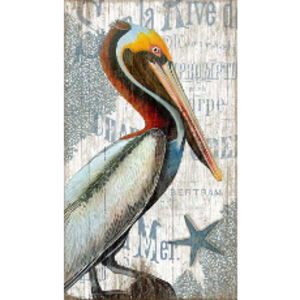 Pelican Wall Art
