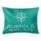 Custom Compass Rose Coordinates Lumbar Pillow - Aqua