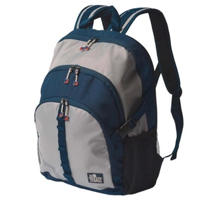 Sailcloth Silver Spinnaker Daypack, Silver with Blue Trim