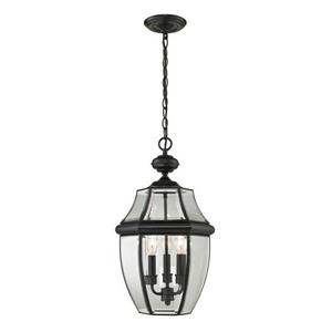 Ashford 3 Light Exterior Hanging Lantern In Black