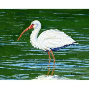 Dick's White Ibis Outdoor Wall Hanging 24x30