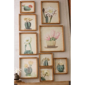 Cactus Flower Prints Under Glass Set of 9