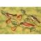 "Liora Manne Illusions Song Birds Indoor/Outdoor Mat Green 19.5""X29.5"""