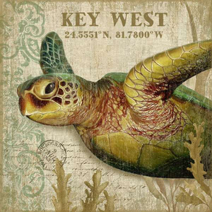 Sea Turtle ll Wall Art