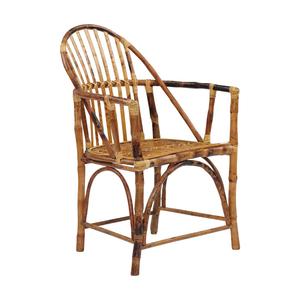 Coastal Windsor Rattan Arm Chair Set Of 2 -Tortoise