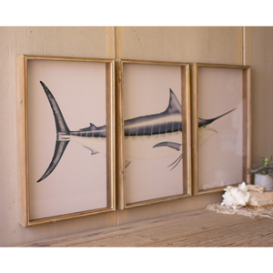 Triptych Framed Marlin Prints Under Glass
