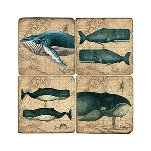 The Whale Coasters Set Of 4