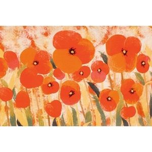 """Liora Manne Illusions Poppies Indoor/Outdoor Mat Red 23""""X35"""""""
