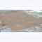 """Liora Manne Sahara Plains Indoor/Outdoor Rug Neutral 5'X7'6"""""""