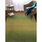 """Liora Manne Savannah Horizon Indoor Rug Green 7'6""""X9'6"""""""