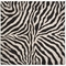 Liora Manne Visions I Zebra Indoor/Outdoor Rug Black 8' Sq
