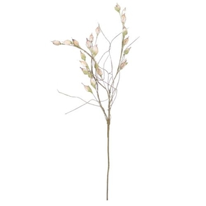 Kalalou Botanica 82261 Plants Accessories, Set of 6
