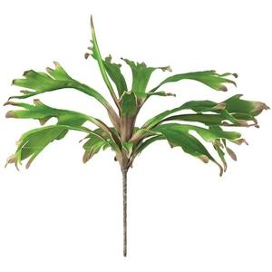 Kalalou Botanica 8724 Plants Accessories, Set of 6