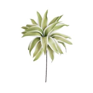 Kalalou Botanica 8786 Plants Accessories, Set of 6