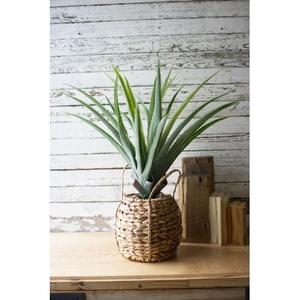Artificial Aloe In A Woven Pot
