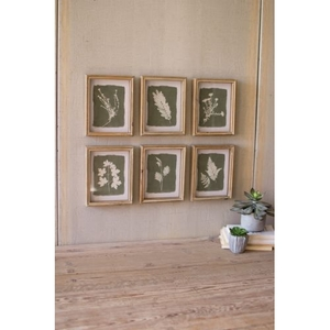 Fern Prints Under Glass, Set of 6