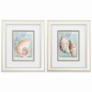 Nautilus Turban Set of 2 Framed Beach Wall Art