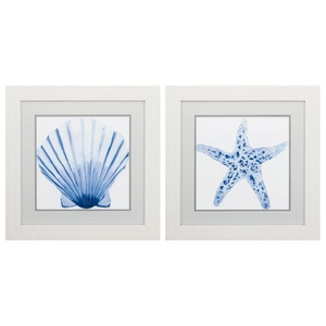 Fan Shell Starfish Set of 2 Framed Beach Wall Art
