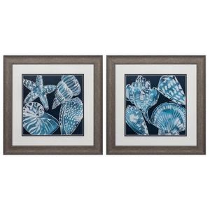 Marine Shells Set of 2 Framed Beach Wall Art