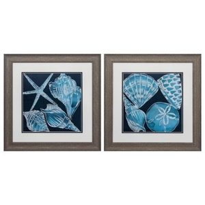 Marine Shells Set of 2 Framed Beach Wall Art