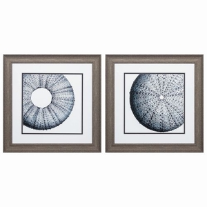 Sea Urchin Set of 2 Framed Beach Wall Art